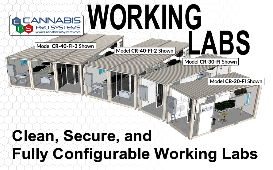 Working Labs
